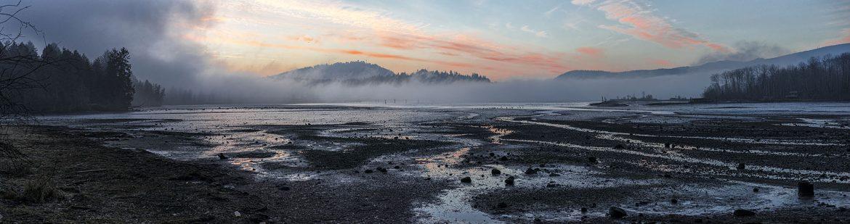 Port Moody Fog PF234A