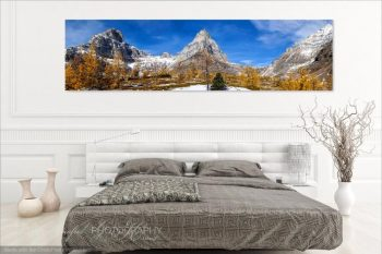 Larch Valley Room View