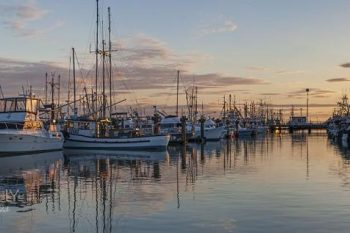 Steveston Harbour Twilight ST155A