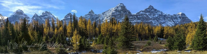 Ten Peaks Larch Valley TL191A