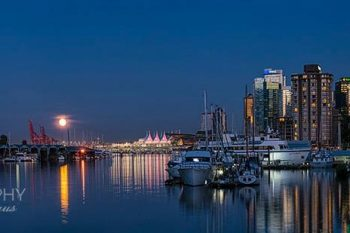 Coal Harbour Moon CH376A