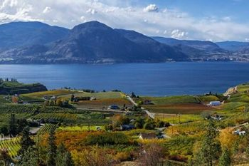 Okanagan Lake Fall OL391A