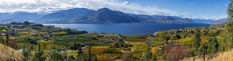 Okanagan Lake Fall OL391A