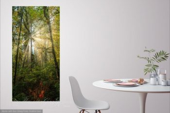 Autumn Forest Sunrays AT390A Room View