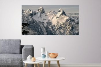 The Lions Pano LP237A H Room View