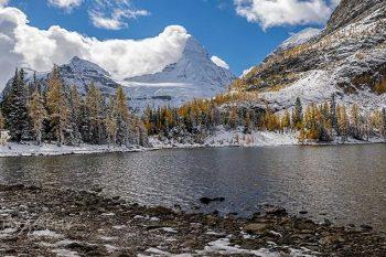 Assiniboine Sunburst Lake AS381A