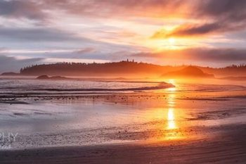 Schooner Cove Sunset Tofino SC262A