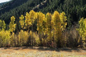 Autumn_White_Lake_AW334Aws