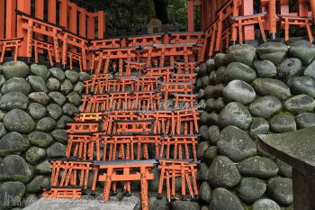 Fushimi_Inari_Shrine_Torii_Gates_4461_ws