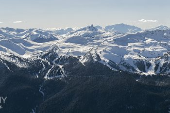 Whistler_Wide_WW448A_ws